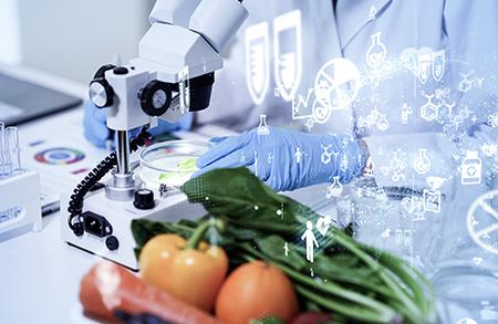 Food Defense-/Food Fraud-Beauftragter Online-Seminar